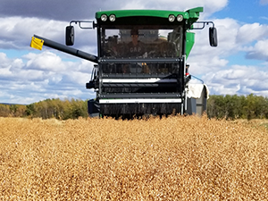 BC Grain AGM