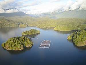 BC Salmon Farm Tour
