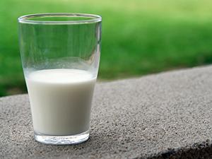 CAFA Meeting Dairy