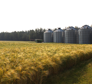 Static Image_BC Grain Producers 1