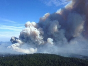 CAI Wildfire Workshops