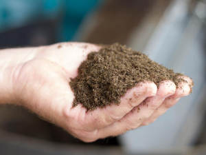 Soil Health Webinar